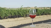 parreira : Rose wine glass at vineyard. Close up of red wine or rose wine glass outside in front of farm in countryside.