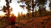 природа : Running runner man athlete training outdoors exercising on mountain forest trail at sunset in amazing landscape nature. Fit handsome athletic male working out for marathon run outside in summer.