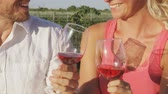 espanhol : Wine drinking couple happy at vineyard swirling and smelling wine and toasting. Romantic woman and man drinking red rose wine smiling happy young couple in love. Stock Footage