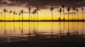 z��pad slunce : Paradise beach sunset with tropical palm trees. Summer travel holidays vacation getaway colorful concept photo from sea ocean water at Big Island, Hawaii, USA