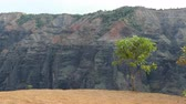 estados : Hawaii landscape. Waimea Canyon State Park, Kauai, Hawaii, USA.