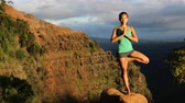 joga : Meditation yoga - woman meditating on doing yoga tree pose at sunset on Kauai, Hawaii, USA. Serene relaxing girl in amazing nature landscape in Waimea Canyon.