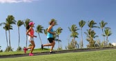 calçada : People running exercising on path in beautiful neighborhood with palm trees. Young fit fitness couple jogging together Vídeos