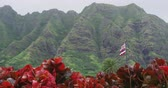 fundo : Hawaii nature landscape with Kualoa Mountain range and Hawaiian Flag on Oahu, Hawaii, USA.