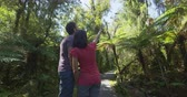 pântano : Hiking couple in New Zealand. People hiking in swamp forest nature landscape in Ship Creek on West Coast of New Zealand. Tourist couple pointing sightseeing tramping on South Island of New Zealand.