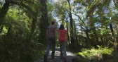 pântano : Hiking couple in New Zealand. People hiking in swamp forest nature landscape in Ship Creek on West Coast of New Zealand. Tourist couple sightseeing tramping on South Island of New Zealand. Stock Footage