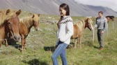 equitation : Horse - woman petting Icelandic horses in sweater on Iceland. Happy smiling people looking at horses going horseback riding. Couple in beautiful nature countryside. Stock Footage
