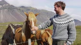 escandinavo : Iceland horse - man petting Icelandic horses happy in nature. Man in Icelandic sweater going horseback riding smiling happy with horse in beautiful nature on Iceland. Handsome Scandinavian model.