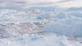 jakobshavn : Global Warming and Climate Change - Icebergs from melting glacier in icefjord in Ilulissat, Greenland. Aerial video of arctic nature iceberg and ice landscape. Stock Footage