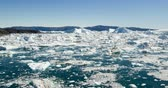 ледник : Ice and Icebergs in Icefjord - aerial video of arctic iceberg nature landscape on Greenland. Iceberg and ice in fjord from melting glacier. Ilulissat icefjord, Disko bay, Greenland. Climate change. Стоковые видеозаписи
