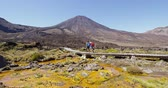 tongariro : Travel Vacation People Hiking in New Zealand Tongariro Alpine Crossing By Mount Ngauruhoe. Couple backpackers walking on tramping track against mountain. It is a famous hiking spot in New Zealand. Stock Footage