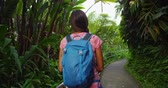 gözcü : Hawaii travel. Woman tourist hiking in Akaka falls State Park on Big Island, Hawaii. Female hiker visiting a popular tourist destination and hawaiian attraction. RED EPIC SLOW MOTION.