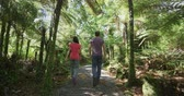 pântano : New Zealand. People hiking in swamp forest nature landscape in Ship Creek on West Coast of New Zealand. Tourist couple sightseeing tramping on South Island of New Zealand.