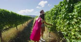 parreira : Vineyard couple looking at grapes walking by grapevines in wine region winery walking. People on holiday or wine tasting experience in summer valley landscape