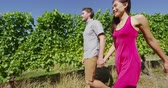 kalifornie : Vineyard - romantic couple holding hands walking by grapevines on wine tour in wine region visiting winery. People on holiday or wine tasting experience in summer valley landscape. SLOW MOTION.