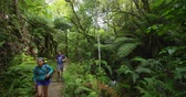 tramp : New Zealand forest nature landscape with hiking people tramping on travel vacation backpacking on hike. Couple on Abel Tasman Coast Track, one of the Great Walks and tramping tracks of New Zealand.