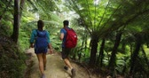 nova zelândia : Hiking people tramping active lifestyle. New Zealand forest nature landscape with hiking couple tramping on travel vacation hike on Abel Tasman Coast Track, one of the Great Walks of New Zealand. Stock Footage
