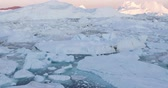 groenland : Travel wanderlust adventure in Arctic landscape nature with icebergs - tourist person looking at view of Greenland icefjord - aerial video. Man by ice and iceberg, Ilulissat Icefjord.
