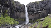 Svartifoss waterfall in Skaftafell on Iceland. Famous tourist attraction of Iceland. Spectacular natural landmark on vacation in Skaftafell. Icelandic nature landscape.