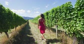 parreira : Vineyard vines at winery Woman walking amidst grapevines in scenic vineyard. Young female is exploring farm in summer. She is wearing pink dress. Stock Footage
