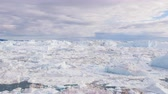 jakobshavn : Climate Change and Global Warming - Icebergs from melting glacier in icefjord in Ilulissat, Greenland. Image of arctic nature ice landscape Stock Footage