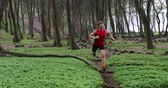 Trail running athlete man training for fitness and marathon living healthy lifestyle outside in beautiful forest landscape on Big Island, Hawaii, USA. Fit male runner model. 59.94 FPS slow motion.