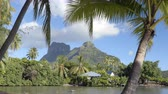 polinesia francese : SEAMLESS LOOP VIDEO: French Polynesia paradise. Bora Bora and Mount Otemanu in Tahiti, French Polynesia, palm trees coral lagoon sea and Mt Pahia, Mt Otemanu, Tahiti, south Pacific Ocean. Filmati Stock