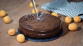 perfuração : A woman is cutting a chocolate Sacher cake. Stock Footage