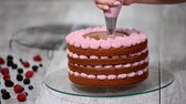 fırın : Preparing making chocolate cake with berries. Womans hand decorate cake. Stok Video