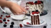 roll on bag : Trendy rustic vertical roll high cake with chocolate, vanilla cream and berries.