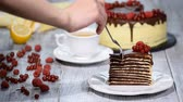 geçiştirmek : Slice of chocolate layer cake with berries and chocolate sauce. Stok Video