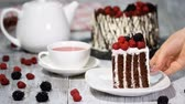 disposable cup : Trendy rustic vertical roll high cake with chocolate, vanilla cream and berries.