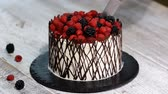 chocolate mold : Cutting trendy rustic vertical roll high cake with berry.