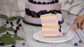 torte salate : Slice of delicious layered cake with berry mousse.