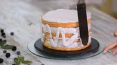 vanille : Pastry cook spreading whipped cream on cake. Stockvideo
