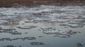 Ice floes on a river Stok Video