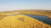 Specific wetland habitat with reed vegetation and artificial pond , countryside landscape with inhabited area in the background, aerial view Dostupné videozáznamy