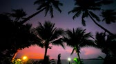 evening : young woman photographs beautiful sunset near palms, lantern on the beach. Koh Samui Thailand Stock Footage