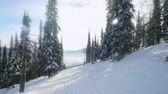 slowmotion : Amazing mountains in Sheregesh covered with snow, and beautiful snowy woods under bright winter sun in slow motion. 1920x1080 Stock Footage
