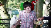 macaw parrot : Thailand, Koh Samui, 22 january 2016. Happy man holds blue-gold Macaw parrot white parrot macaw and iguana in Koh Samui park. 1920x1080