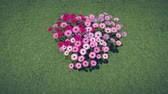 irreal : Heart-shaped flower-garden among green grass