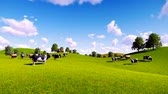 springtime : Rural scenery with a herd of cows grazing on the green meadows