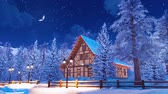 snow covered spruce : Snow covered alpine mountain house at winter night