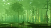 irreal : Night forest swamp with magical firefly lights Stock Footage