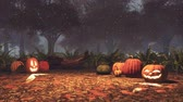 Halloween pumpkins and magic lights at night forest Stock Footage