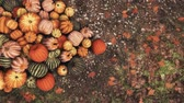 Close-up top view of various colorful autumn pumpkins piled on ground at outdoor rural farmers market for Thanksgiving or Halloween holidays