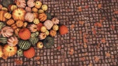 Close-up top view of various colorful autumn pumpkins piled on old cobblestone pavement at outdoors country market for Thanksgiving or Halloween holidays