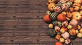 Close-up top view of various colorful autumn pumpkins at farmers market on dark wooden background with copy space