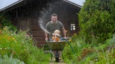 backyard : Happy little boy having fun in a wheelbarrow pushing by dad in domestic garden on warm sunny day. Child watering plants from a hose. Active outdoors games for kids in summer. Stock Footage