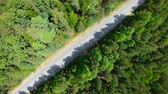 Aerial view of road through the forest. Camera rotation counterclockwise